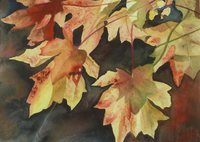 Christine Gill - Autumn leaves